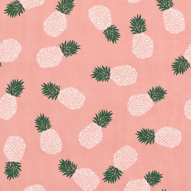 表面20),菠萝(2种)