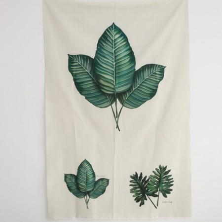 麻不切断)植物园 - 桉树