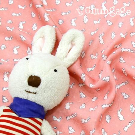 广泛的DTP狗)糖果兔子
