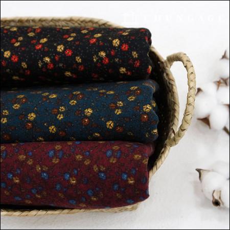 广泛刷棉万寿菊3种